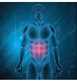 painful stomach vector image vector image