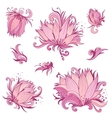 Pink Lotus Flowers Set vector image vector image