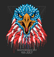 eagle head america usa flag independence day vete vector image vector image