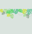 exotic leaves banner vector image