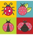 Ladybug icons with black stroke on color vector image vector image