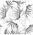 palm leaves silhouette on white background vector image vector image