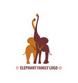 african hugging elephants vector image vector image