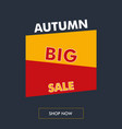 autumn sale vertical banner with oblique back vector image vector image
