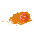 basketball ball icon with an effect vector image vector image