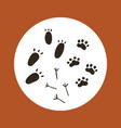 boho collection with animal foot print vector image vector image