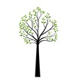 Decorative Spring Tree Silhouette With Green Leave vector image vector image