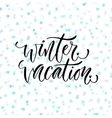 Hand drawn lettering Winter vacation vector image vector image
