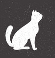 hand drawn whit cat vector image vector image