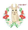 llama with flowers wreath animals sketches vector image