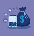 money bag with set icons economy finance vector image
