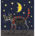 night cat vector image vector image