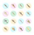 set flat icons freshwater fish vector image vector image