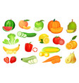 sliced foods chopped vegetables and sliced fruit vector image vector image