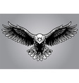 hand drawing style of eagle vector image