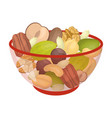 a mixture of different kinds of nuts different vector image vector image
