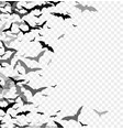 Black silhouette of bats isolated on transparent