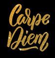 carpe diem hand drawn lettering phrase isolated vector image vector image