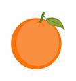 isolated orange vector image