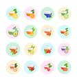 set flat icons fruit tea vector image