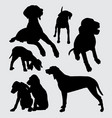 viszla dog animal silhouette vector image