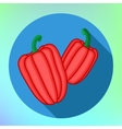 Bell Pepper Isolated on white background vector image