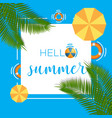 hello summer background template vector image