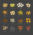 seeds of natural plants in small heaps set vector image