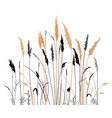 silhouette steppe grass vector image vector image