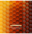 background with honeycombs vector image vector image