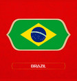 flag of brazi is made in football style vector image