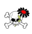 Flower of death and skull Black Daisy flower grows vector image