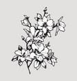 magnolia twig vector image vector image