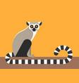 sitting lemur vector image vector image