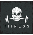 skull holding barbell in the teeth grunge fitness vector image vector image