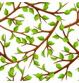 summer seamless pattern with branches of tree and vector image
