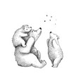 teddy bears cute family sketch stargazing watching vector image