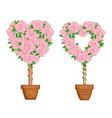 hearts set of trees in pots vector image