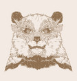 bear portrait with carnival mask vector image vector image