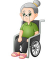cartoon grandmother sitting in the wheelchair vector image