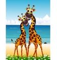 cute couple giraffe cartoon on beach vector image vector image