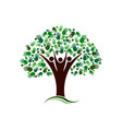 family tree with hands network logo vector image vector image