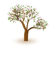 Isolated beautiful cherry blossom tree vector image
