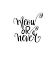 meow or never - hand lettering inscription text vector image