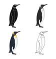 penguin flightless sea bird the imperial penguin vector image