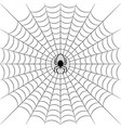 silhouette cobweb and spider vector image