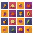 stylized icons of vegetables vector image vector image