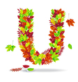 The letters of autumn leaves with drops of water vector image