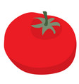 tomato flat isolated object on a white background vector image vector image