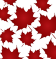 background canada day vector image